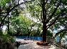 초여름 자성대 공원 산책