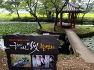 고성 가볼만한 곳- 고성 장산숲