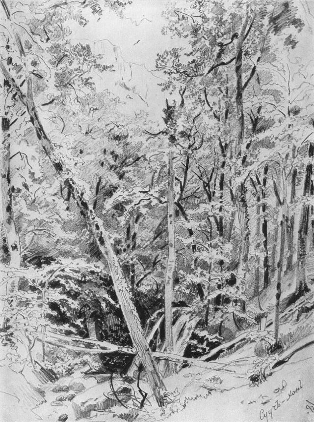 이반 이바노비치 쉬스킨의 작품세계Ⅱ[1871~1879]
